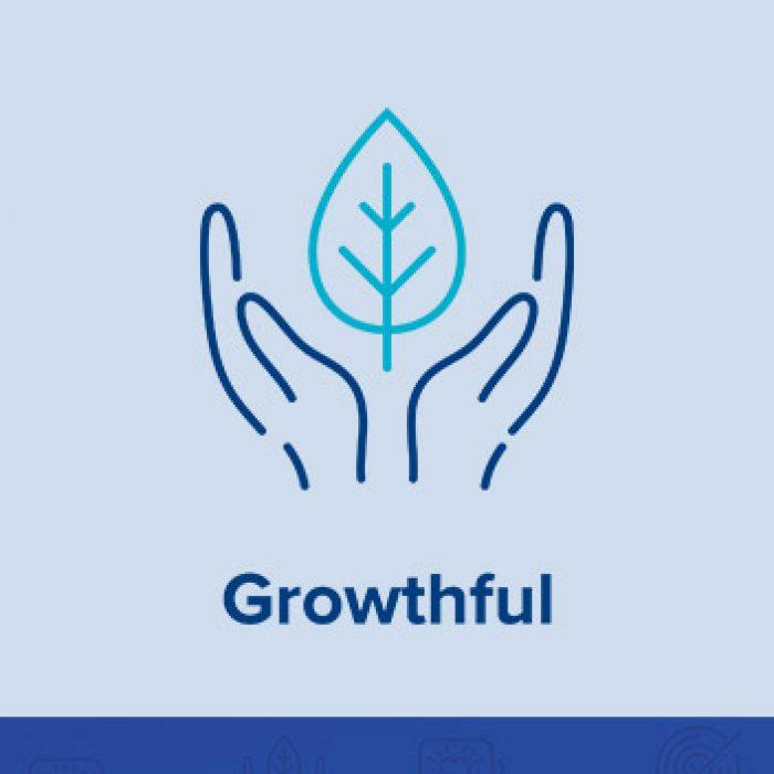 Growthful: Self-Improvement & Safety Nets