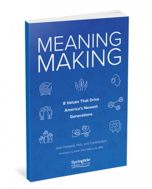 meaningmaking-cover-6x9-final-web